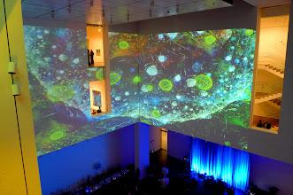 Photo: In the atrium at MoMA, 2010.12.