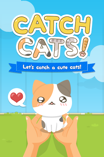 CATCH CATS ~Cute Kitty~