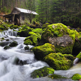 Waterfall by Kai Süselbeck - Landscapes Forests ( winter, cold, waterfall, forest, austria )