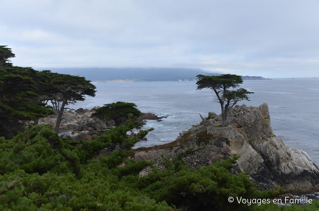 17-mile drive Monterey