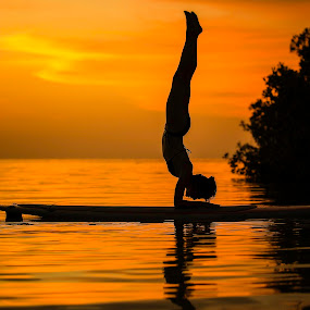 Forearm Balance by Troy Wheatley - Sports & Fitness Watersports ( water, balance, woman, sunset, paddleboard, yoga,  )