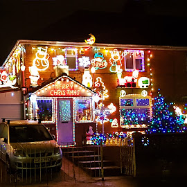 Lit Up by Ingrid Anderson-Riley - Public Holidays Christmas