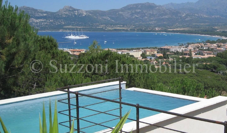 Villa avec piscine et terrasse Calvi