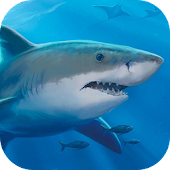 Great Shark 3D Locker Theme