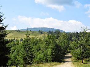 Photo: 01.Początek szlaku na przełęczy Kriwopilski Perewał (Кривопільський перевал). Połonina Kostrzyca (Костшица, 1586 m) widoczna na drugim planie.
