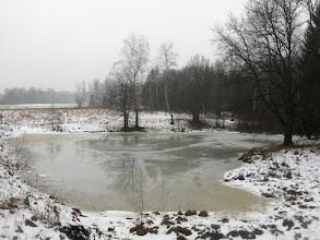 Photo: Озеро восточнее Бортнево