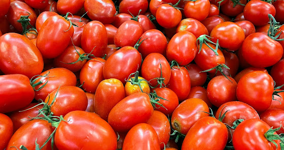 FruitVegetables pide a Europa que actúe sobre el Acuerdo UE-Marruecos