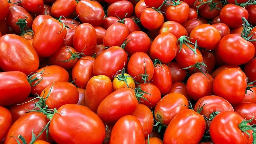 La industria del tomate pide ayuda a la UE.