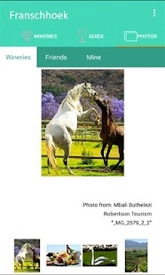 Franschhoek Wine Valley- screenshot thumbnail