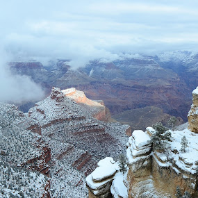Grand Canyon (Snow) by Bharath Booshan - Landscapes Mountains & Hills