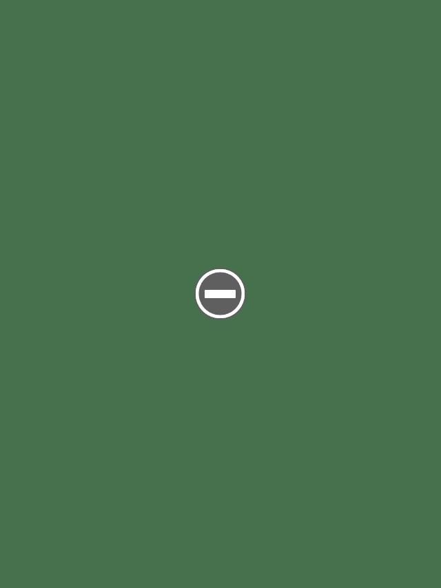 Служба в армии в Северной Корее, награды и ордена все равно можно получить даже только за участие в параде