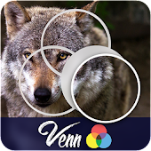 Venn Wolves: Circle Jigsaw