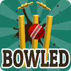 Bowled 3D - Cricket Game icon