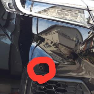 ステップワゴン  SPADA HYBRID G・EX  RP5のカスタム事例画像 インプット さんの2018年09月20日22:09の投稿