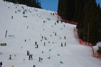 Photo: Race of Champions venue. Three courses on Lower Hughes - skiers left