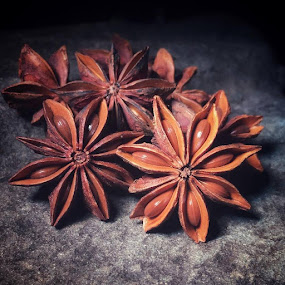 STAR ANISE by Karen Tucker - Food & Drink Ingredients ( seasoning, macro, oriental seasoning, seeds, spice, cell photo, still life, star shape, brown, mobile phone photo, taken with an iphone se, phone photo, star anise,  )