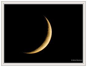 Photo: Neumond 18:59:35  PENTAX K-7 ISO 100 Belichtung 1/2 Sek. Blende f/8.0  Brennweite 800mm Datum und Uhrzeit  29. Oktober 2011  18:59:35 INFO 10. Dezember: Höchster Vollmond für acht Jahre  10. Dezember: Totale Mondfinsternis am frühen Abend In der maximalen Phase um 15.32 Uhr ist der Mond 111% seines scheinbaren Durchmessers  im südlichen Kernschatten der Erde eingetaucht. http://de.wikipedia.org/wiki/Mondphase