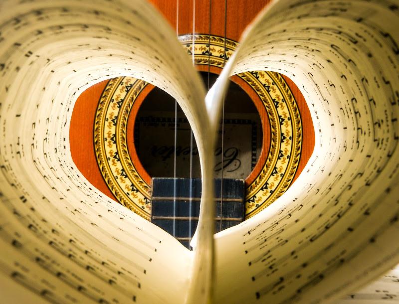 Musica nel cuore di Diana Cimino Cocco