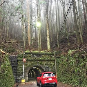 エクストレイル T32  4WD  20XI  2018年式のカスタム事例画像 じゅにあさんの2020年02月17日20:58の投稿