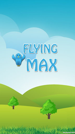 Flying MAX