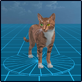 Wild Cats: Avatar Maker 3D