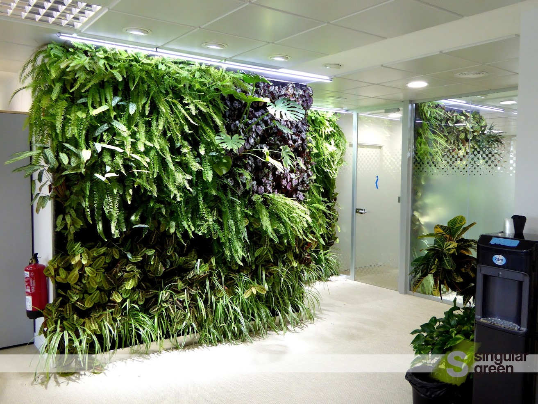 Los jardines verticales de madrid cumplen 1 a o alicante for Plantas recomendadas para jardin vertical