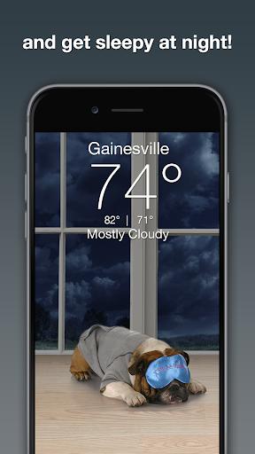 Weather Puppy - App & Widget Weather Forecast ss3
