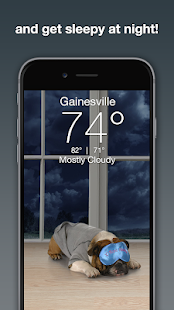 The Best Weather Puppy App Free Pics