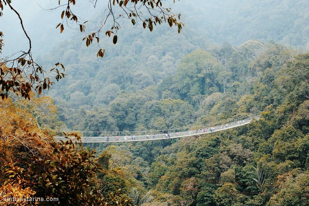 situ gunung sukabumi - situ gunung suspension bridge