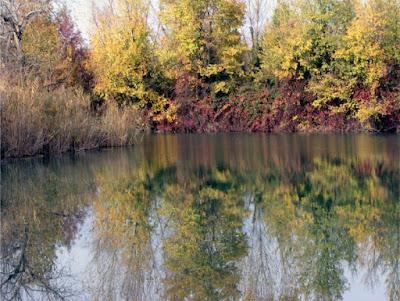 Riflessi d'autunno di andreamazza