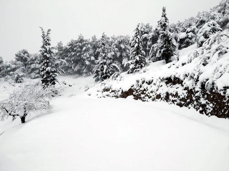 Estampa totalmente invernal en Serón. /Foto Posada del Candil