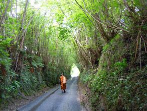 Photo: Walking along narrow West Sussex roads