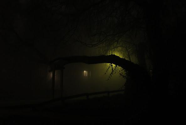 la casetta nel bosco di Giovi18