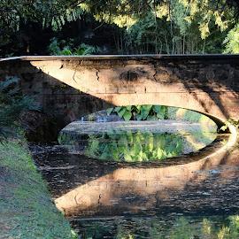 Reggia Borbonica di Caserta by Angelo Durante - City,  Street & Park  Historic Districts