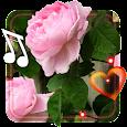Spring Love live wallpaper apk