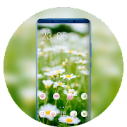 Theme for spring nature cute flowers wallpaper icon