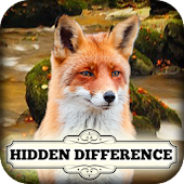 Hidden Difference The Fox Says