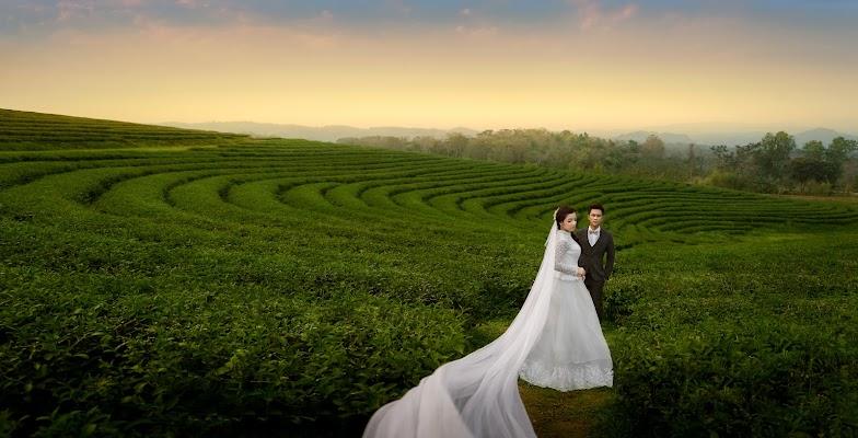Wedding photographer Art Sopholwich (artsopholwich). Photo of 17.03.2018