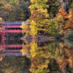 Alley Park Bridge by Patrick Morgan - Landscapes Waterscapes ( water, alley park, ohio, covered bridge, fall, fine art, lancaster )