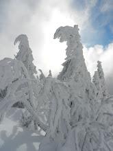 Photo: 06 Zwercheck: Auftritt der Schneegeister