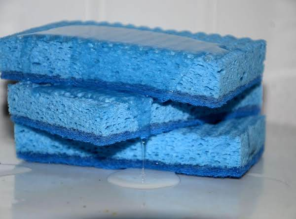 An Easy Solution To Dirty Sponges