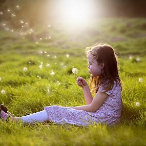Dandelion Dreams by Una Williams Photos - Babies & Children Children Candids ( field, child, grass, light, sun, #GARYFONGDRAMATICLIGHT, #WTFBOBDAVIS )