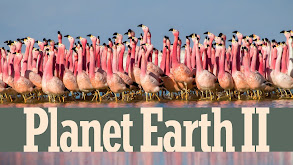 Planet Earth 2 thumbnail