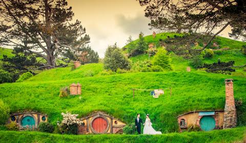 Wedding photographer Auckland (royman882003). Photo of 28.07.2017