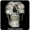 Human Anatomy (Spotting) icon