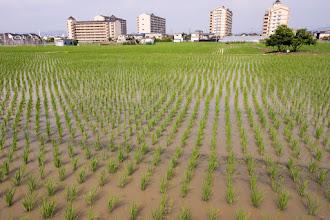 Photo: 日置荘付近