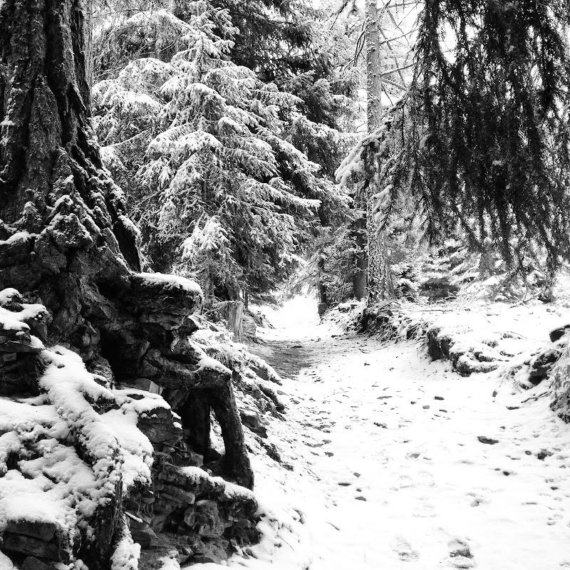 fiabe invernali di jorge63