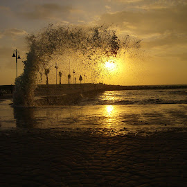 Wave in the sunset by Petranca Piscan - Nature Up Close Natural Waterdrops ( sunset, wave, sea, storm, sun )