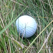 Find Golf Ball