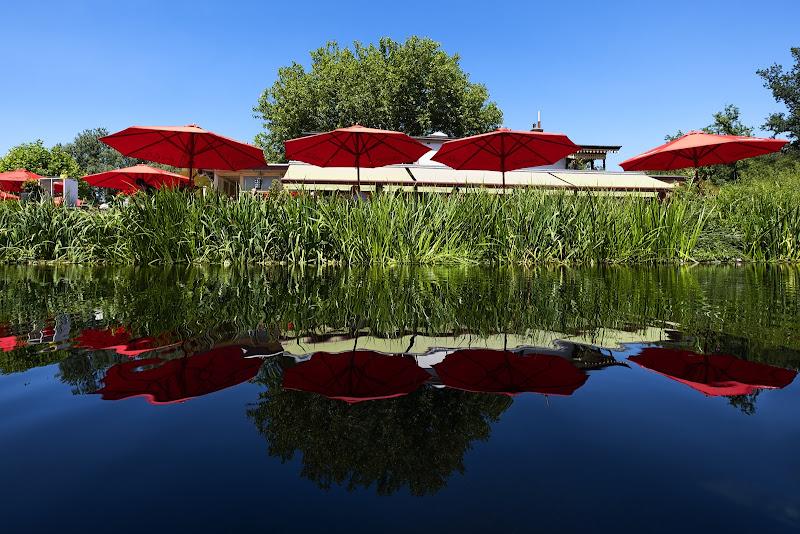 Ombrelli rossi di wallyci